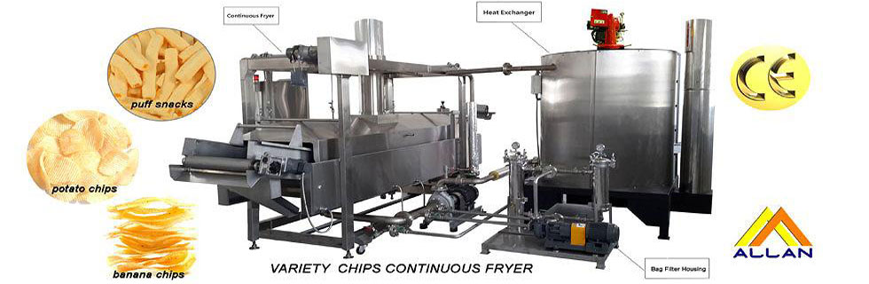 Variety Chips Fryer